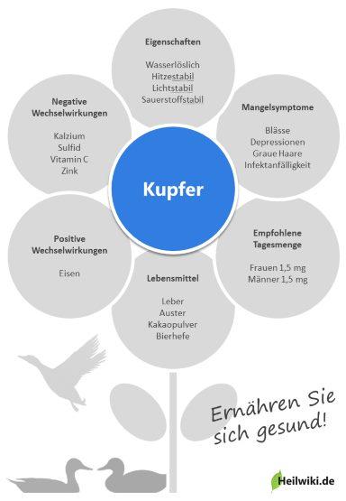 Kupfer Infografik
