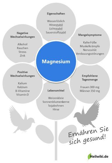 Magnesium Infografik