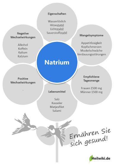 Natrium Infografik