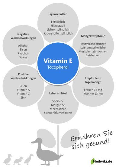 Vitamin E Infografik