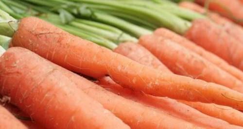Vitamine: Karotten