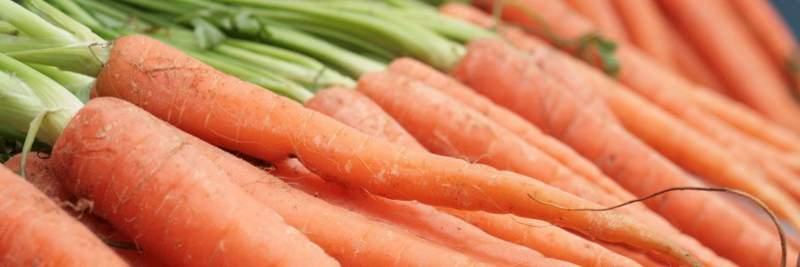 Vitamin A: Karotten