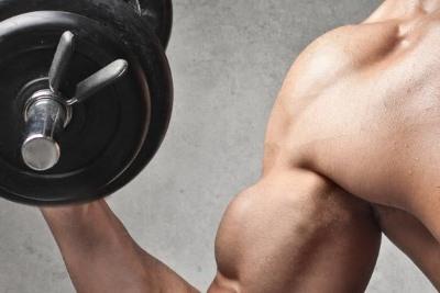Vitamine für den Muskelaufbau: Bizeps