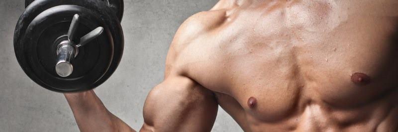 vitamine für muskeln
