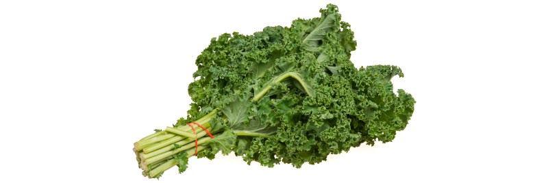 Vitamin A: Grünkohl